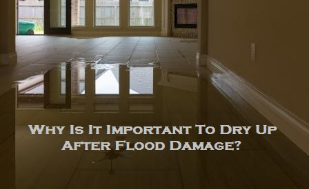 Why Is It Important To Dry Up After Flood Damage?