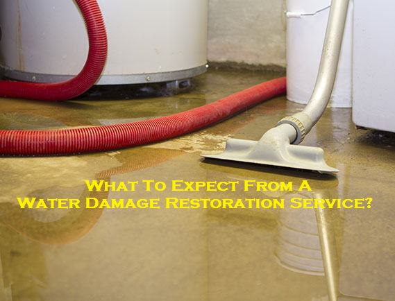 What To Expect From A Water Damage Restoration Service?